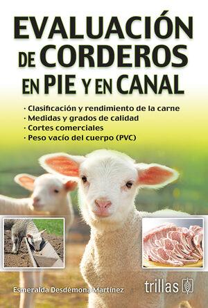 EVALUACION DE CORDEROS EN PIE Y EN CANAL