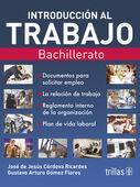 INTRODUCCION AL TRABAJO. BACHILLERATO