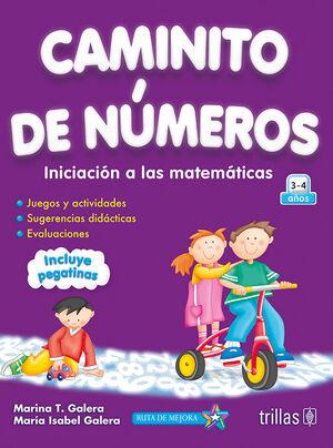 CAMINITO DE NUMEROS