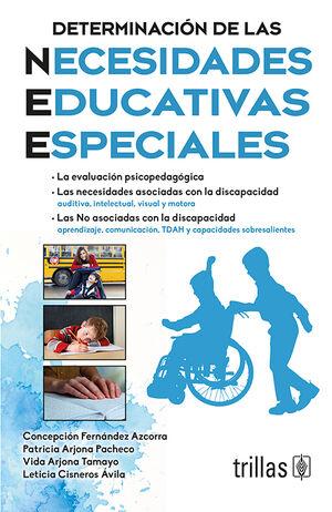 DETERMINACION DE LAS NECESIDADES EDUCATIVAS ESPECIALES