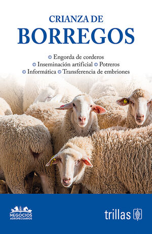 CRIANZA DE BORREGOS