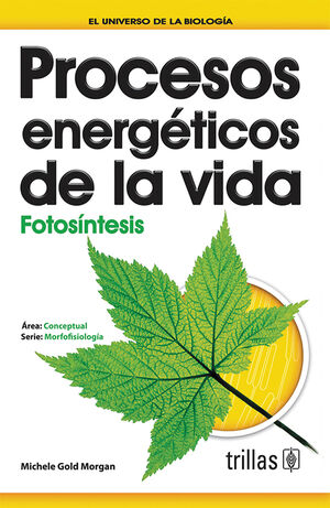 PROCESOS ENERGETICOS DE LA VIDA: FOTOSINTESIS