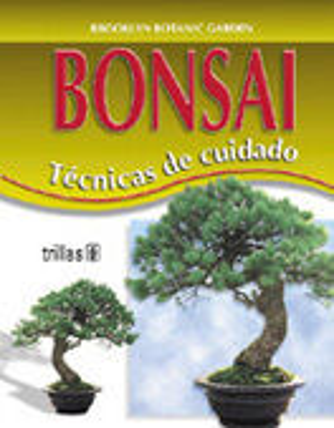 BONSAI TÉCNICAS DE CUIDADO