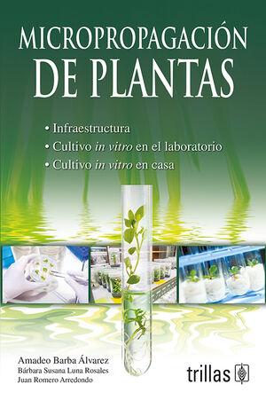 MICROPROPAGACION DE PLANTAS